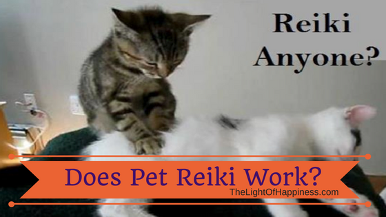 Reiki for Pets: Does Pet Reiki Work