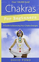 Chakras for Beginners review