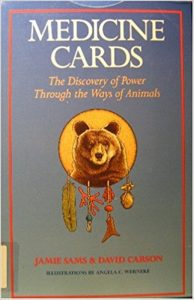 Medic Cards Discovery Power Through Ways Animals Jamie Sams Review