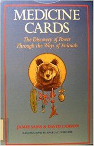 Medic Cards Discovery Power Through Ways Animals Jamie Sams Review