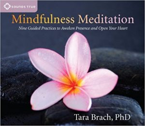 Mindfulness Meditation Nine Guided Practices Awaken Presence Open Your Heart Tara Brach Review
