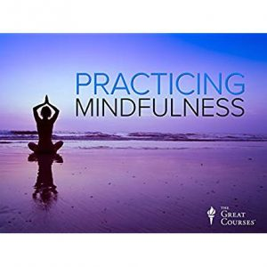 Practicing Mindfulness an Introduction to Meditation Great Courses Mark W Muesse Review