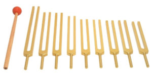Nine Chakra Tuning Fork Set by Tuningforkshop Review