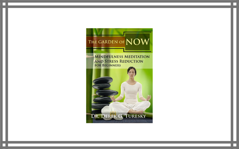 Mindfulness Meditation And Stress Reduction For Beginners The Garden Of Now Dvd – Derek G. Turesky Review