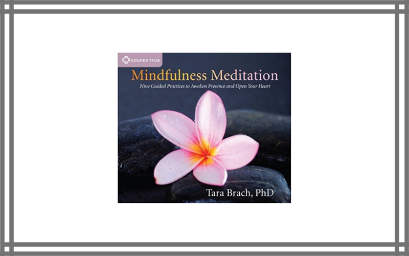 Mindfulness Meditation Nine Guided Practices To Awaken Presence And Open Your Heart – Tara Brach – Best Guided Meditation Dvd Review